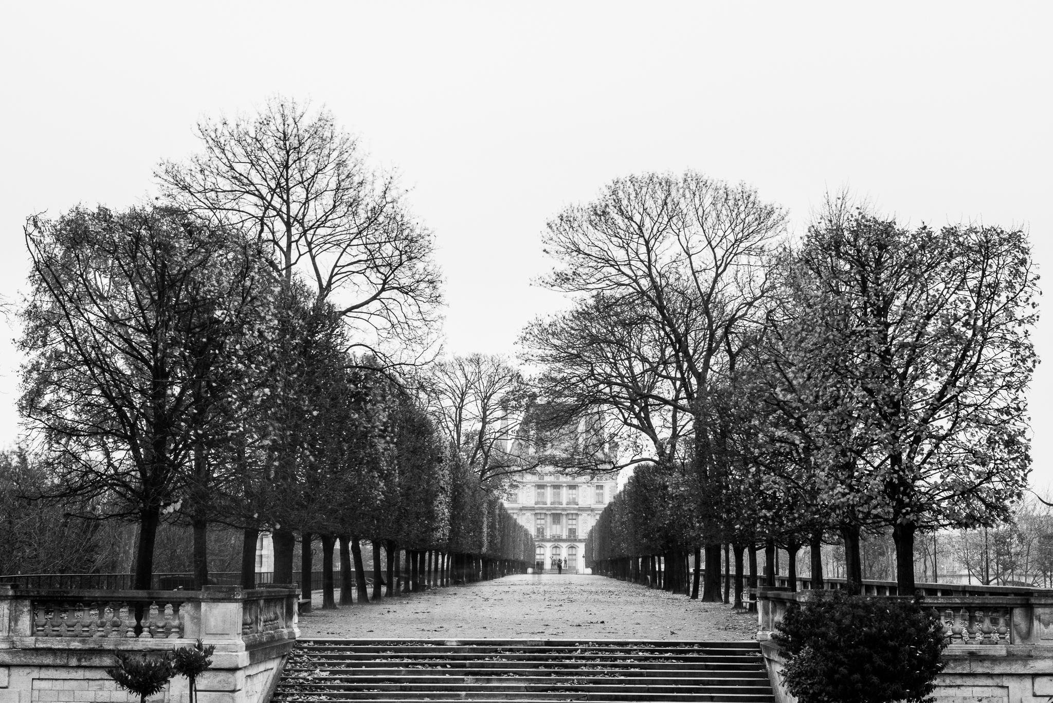 Jason-Davis-Images-Paris-0021.jpg