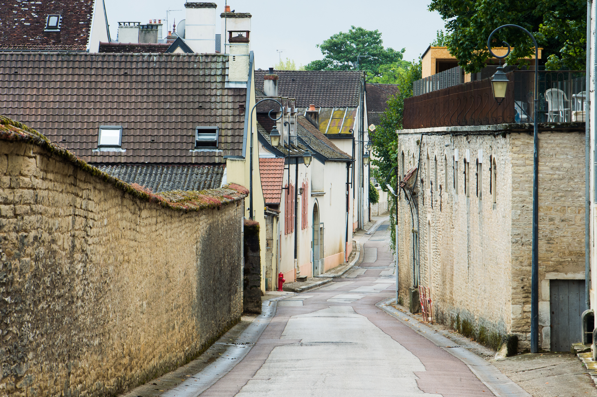 Jason-Davis-Images-Burgundy-0033.jpg