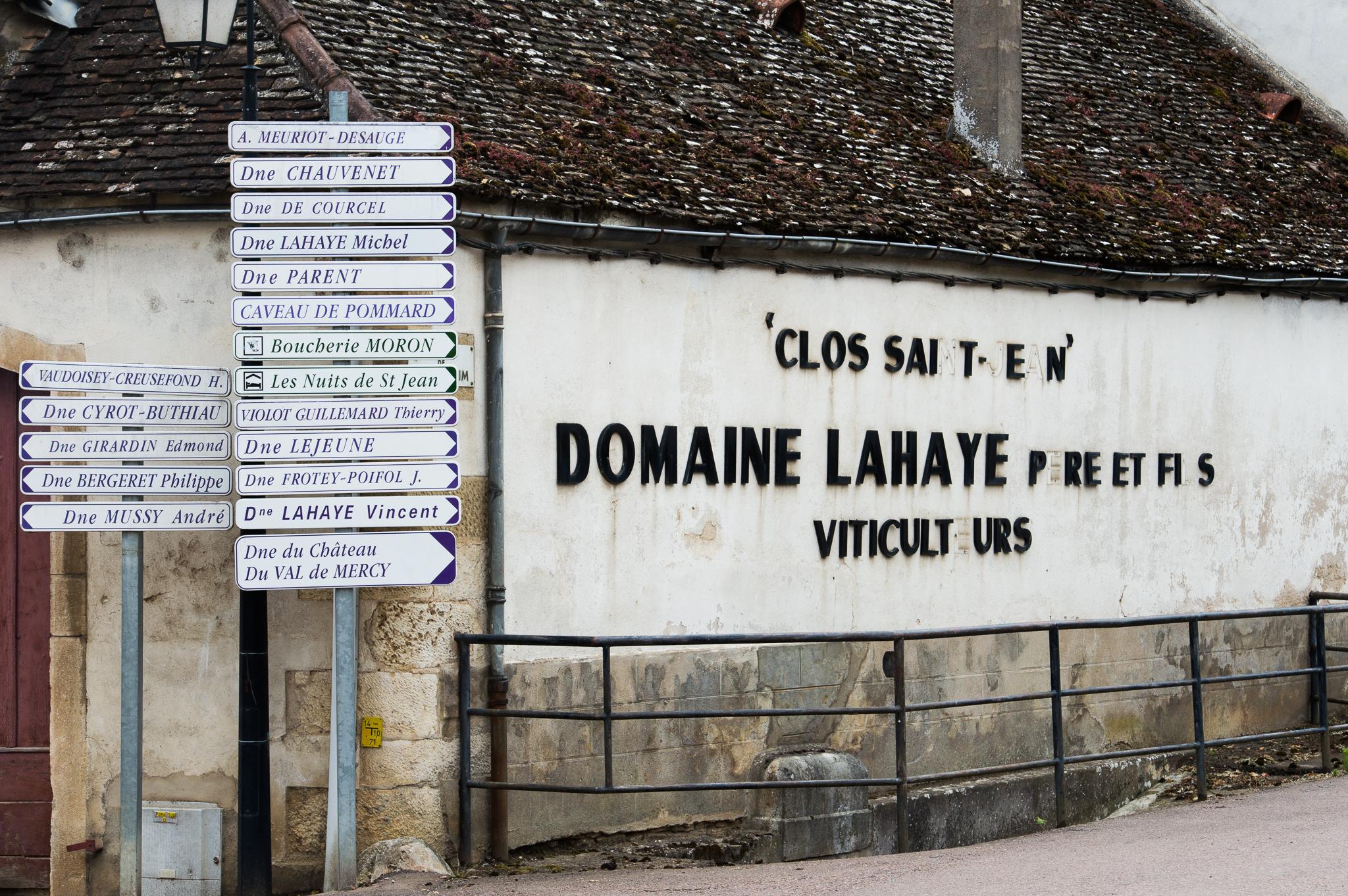 Jason-Davis-Images-Burgundy-0048.jpg