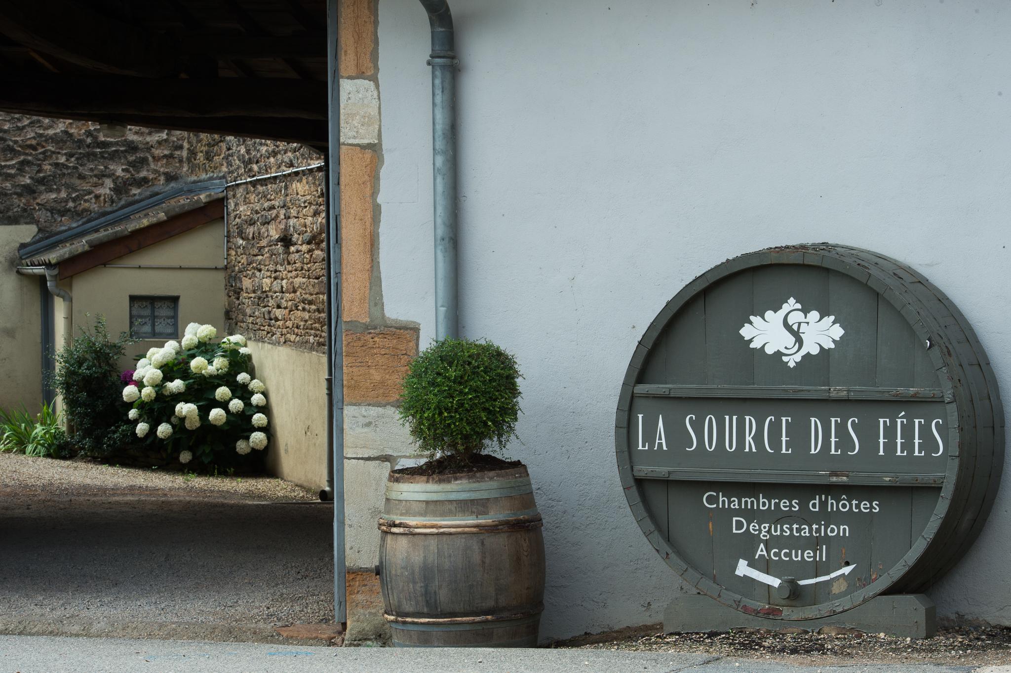 Jason-Davis-Images-Burgundy-0090.jpg