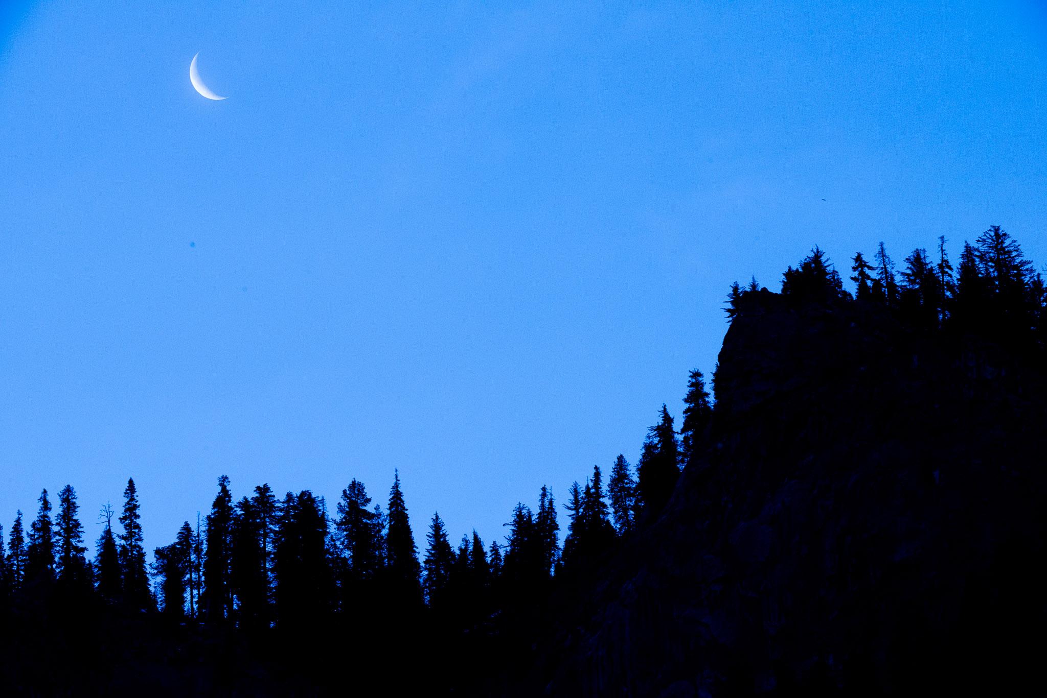 Jason-Davis-Images-Yosemite-0003.jpg