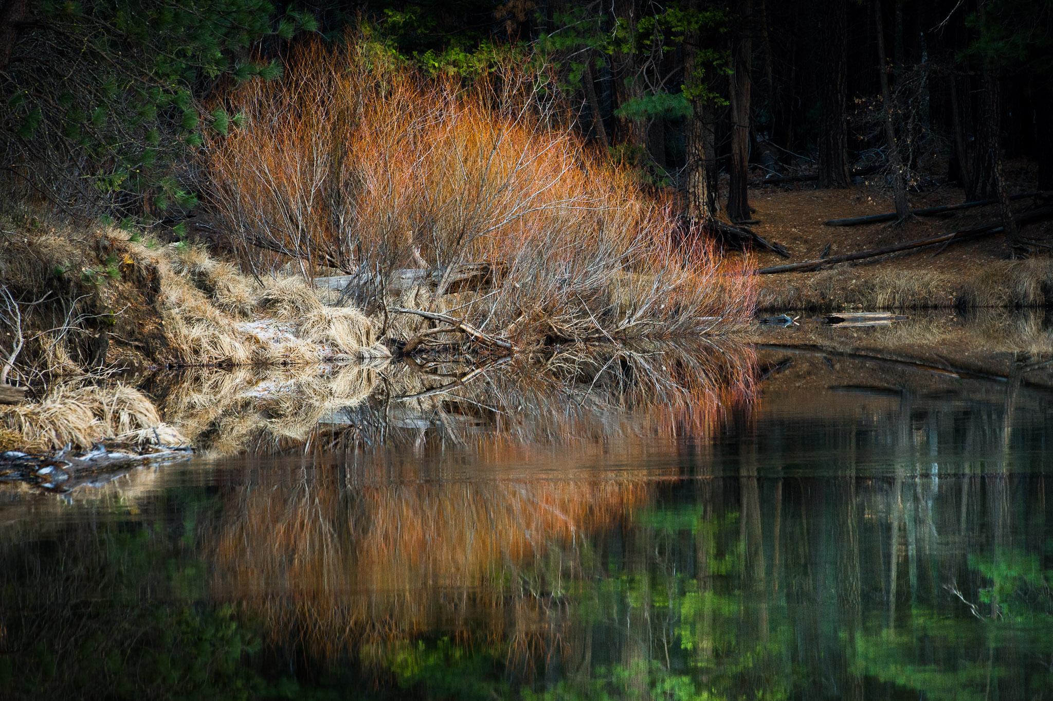 Jason-Davis-Images-Yosemite-0017.jpg