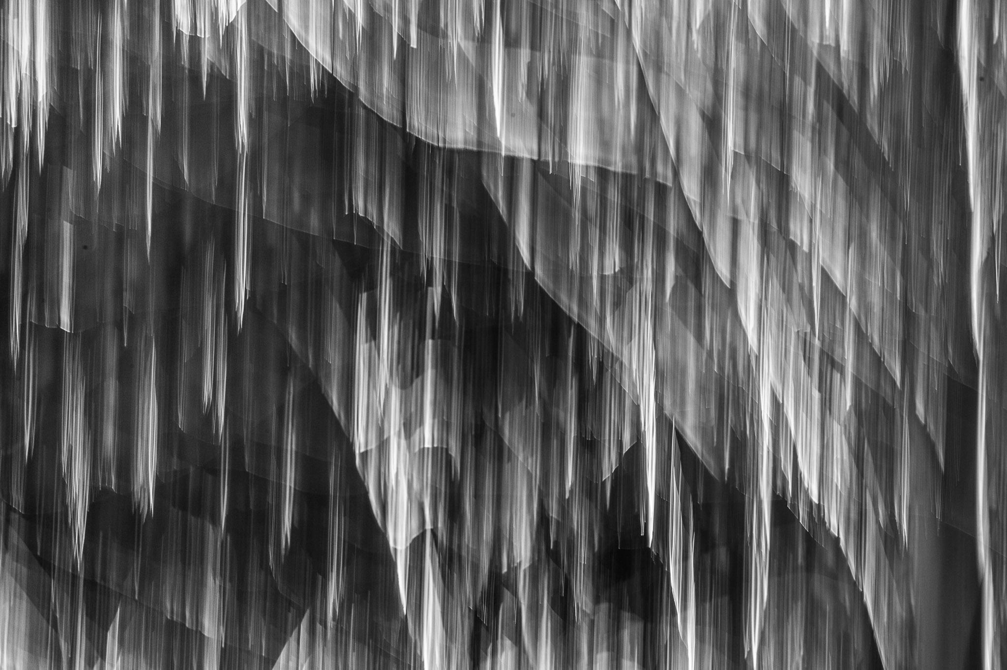 Jason-Davis-Images-Yosemite-0035.jpg
