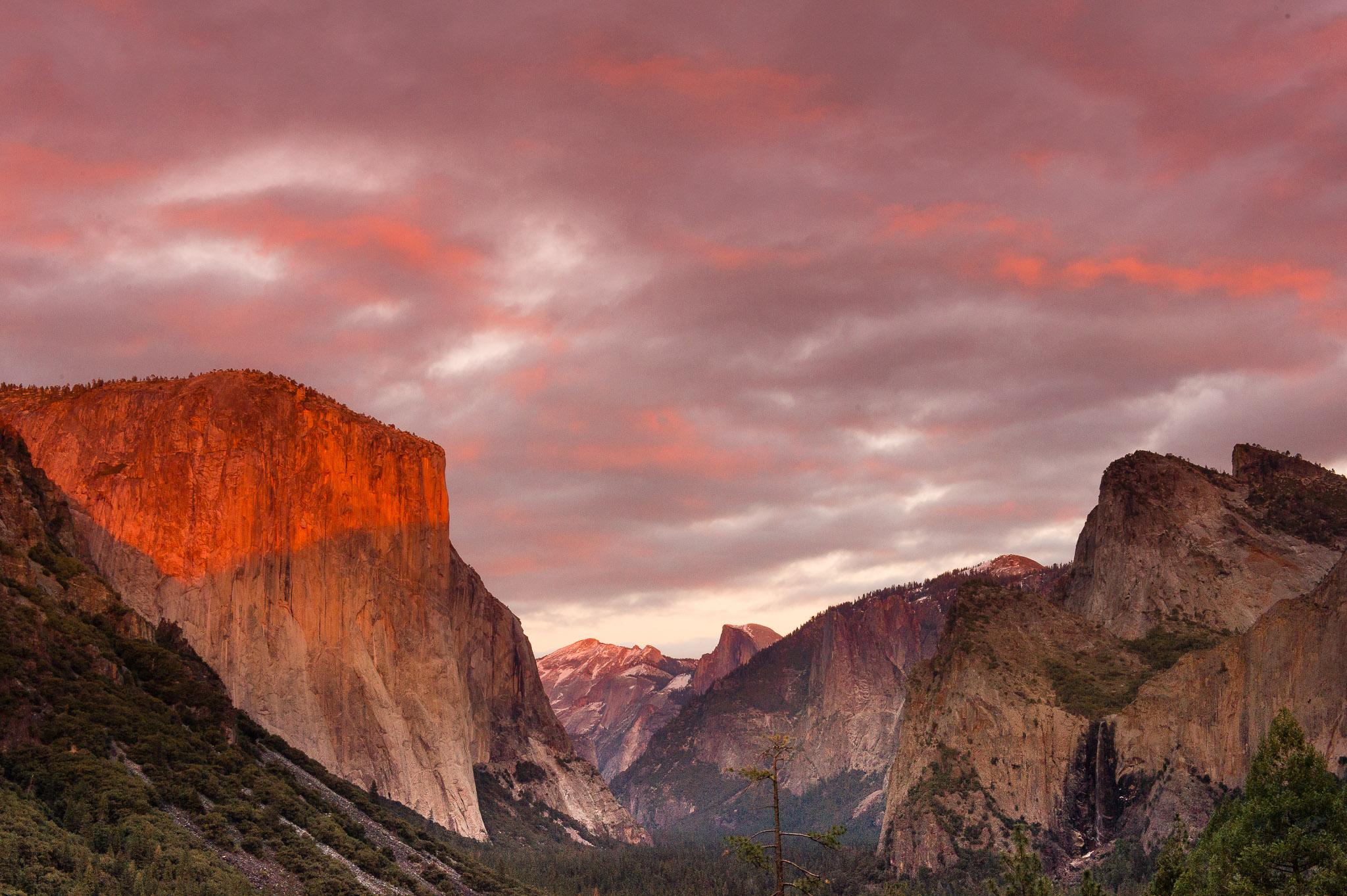 Jason-Davis-Images-Yosemite-0042.jpg