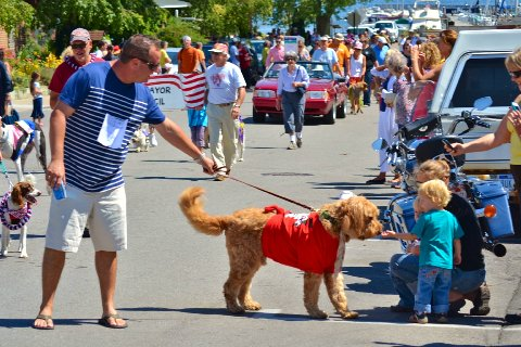 Sniffin' at the dog parade.jpg