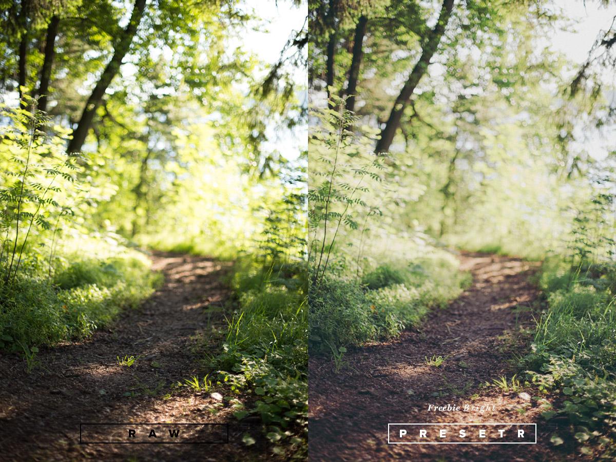 presetr_bright_lightroom_preset_2.jpg