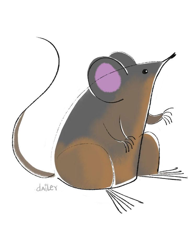 Mouse_CaitlynDailey.jpg