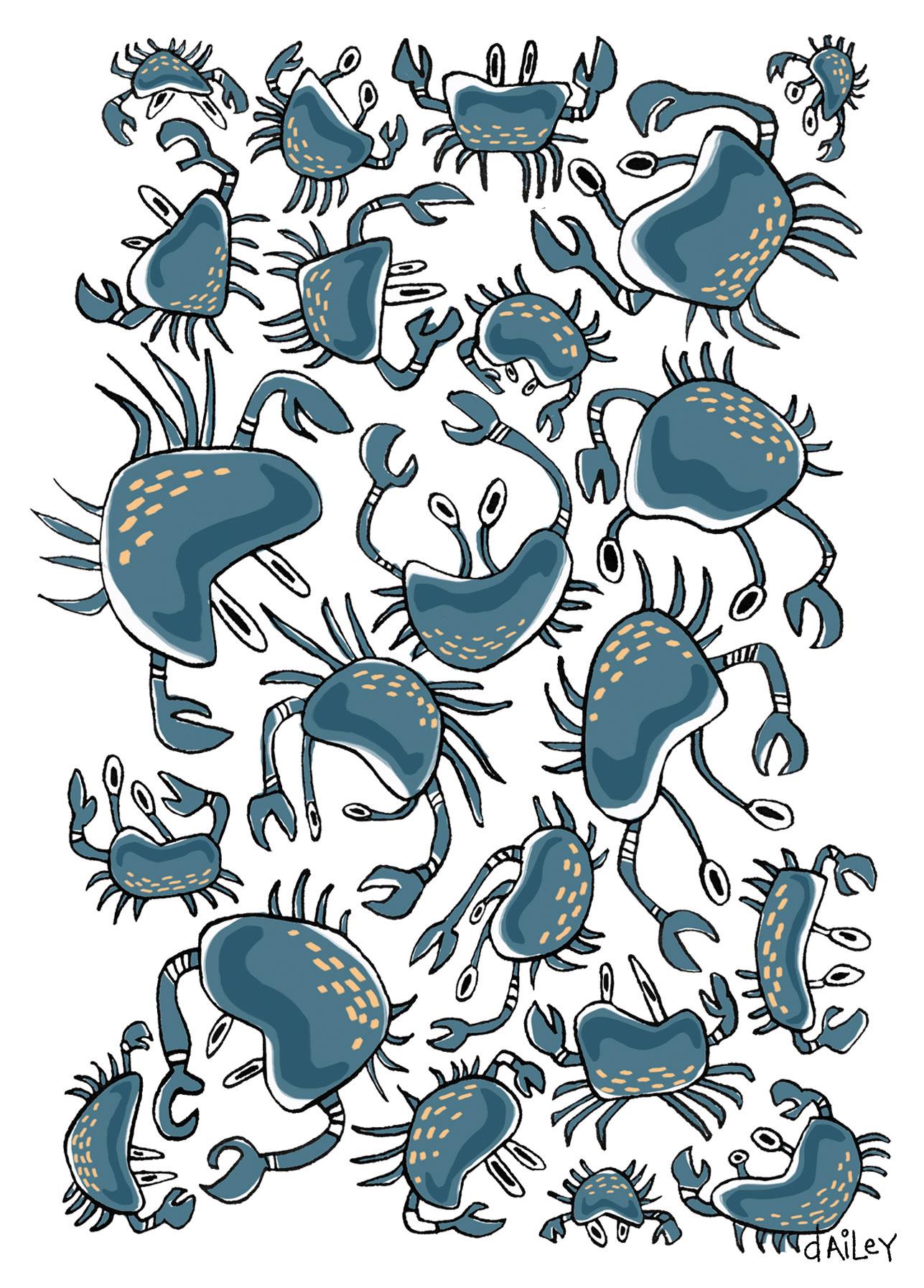 Crabs_CaitlynDailey.jpg