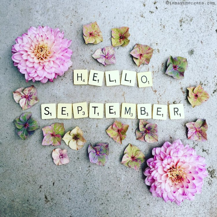 Monthly Horoscopes For September 2017 — My Life Created