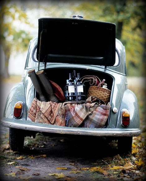 6c+Tailgate+Beetle+via+AshleyBegley+pinterest+FuckYeahPreppies+tumblr+with+effects.jpg