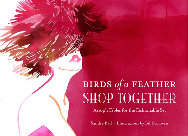 4a+BOOK+Birds+of+a+Feather+Shop+Together+by+Sandra+Bark+Illustrations+by+Bil+Donovan.jpg