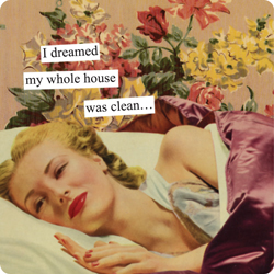 QUOTE+i+dreamed+my+whole+house+was+clean+Anne+Taintor+Inc.jpg