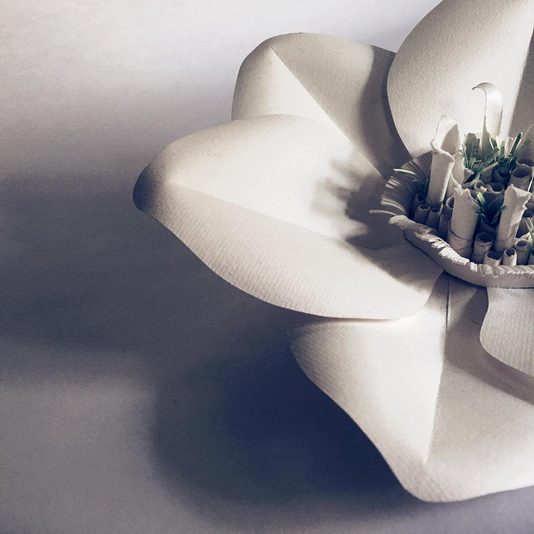 ART Paper Flowers by Michele Tremblay white