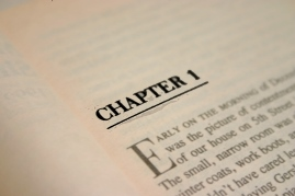 The first chapter and an introduction for property owners and investors.