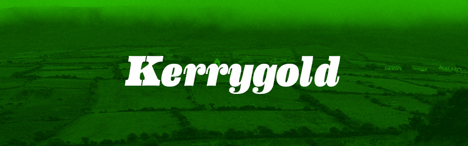 kerrygold_tile.png