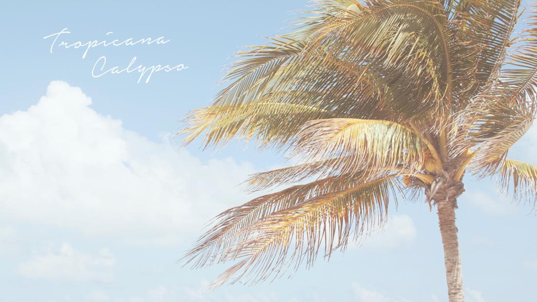 tropicana_calypso.jpg
