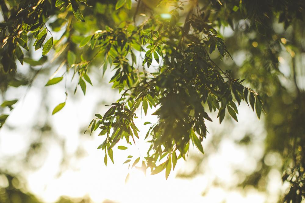 camden-wedding-photography_42.jpg