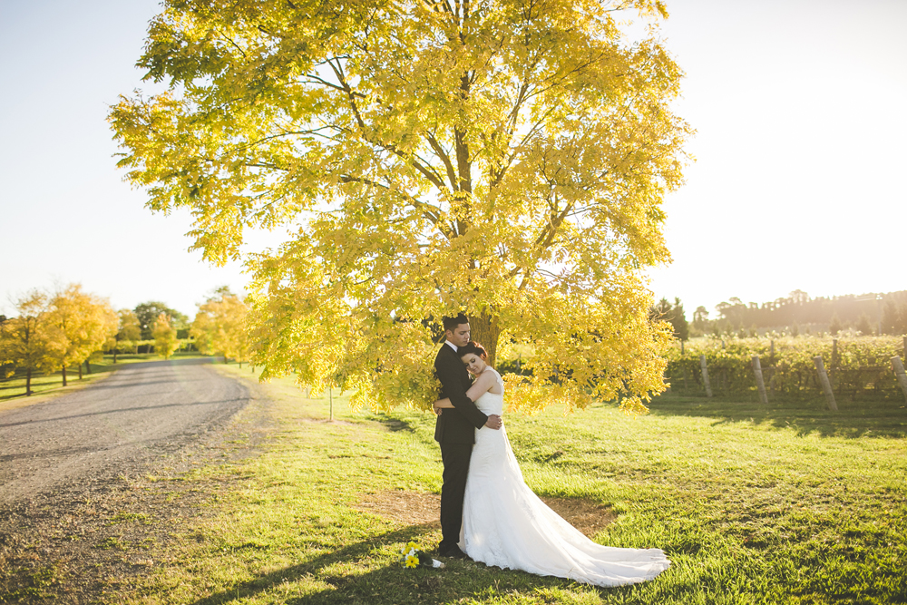 southern highlands winery wedding_091.jpg