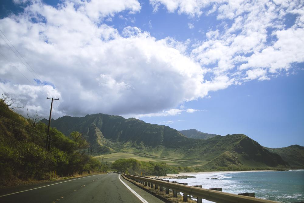hawaii-wedding-videography_07.jpg