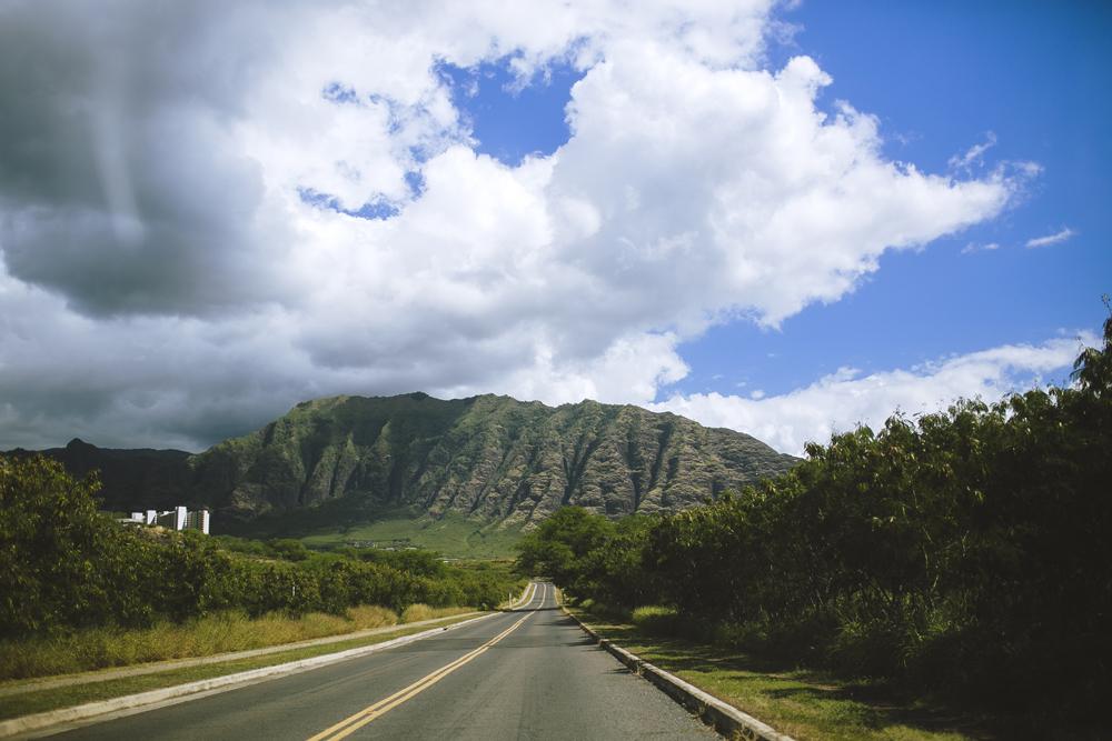 hawaii-wedding-videography_18.jpg