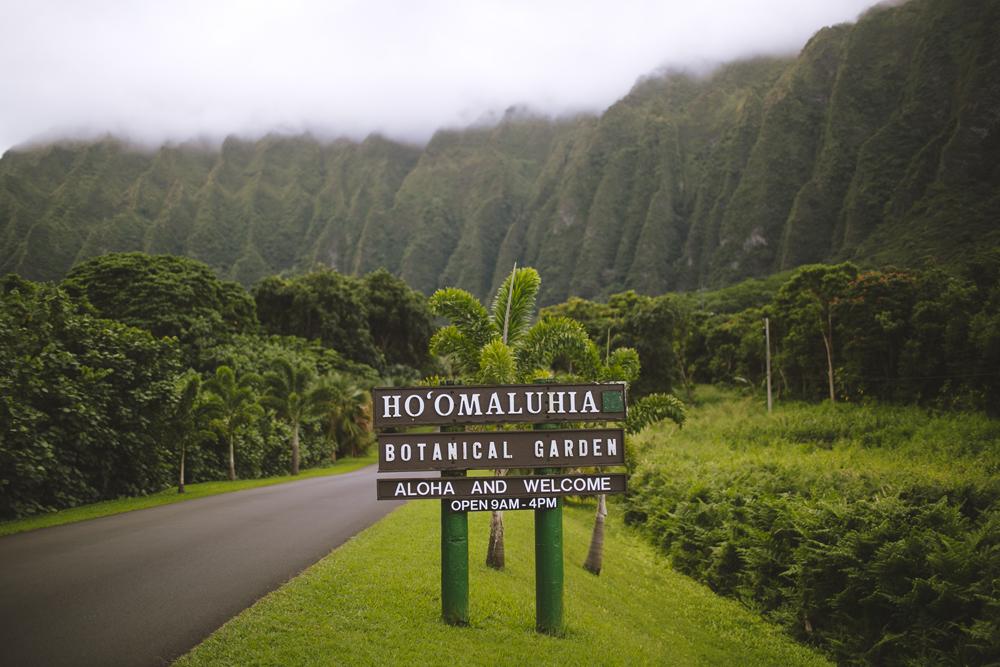 hawaii-wedding-videography_19.jpg