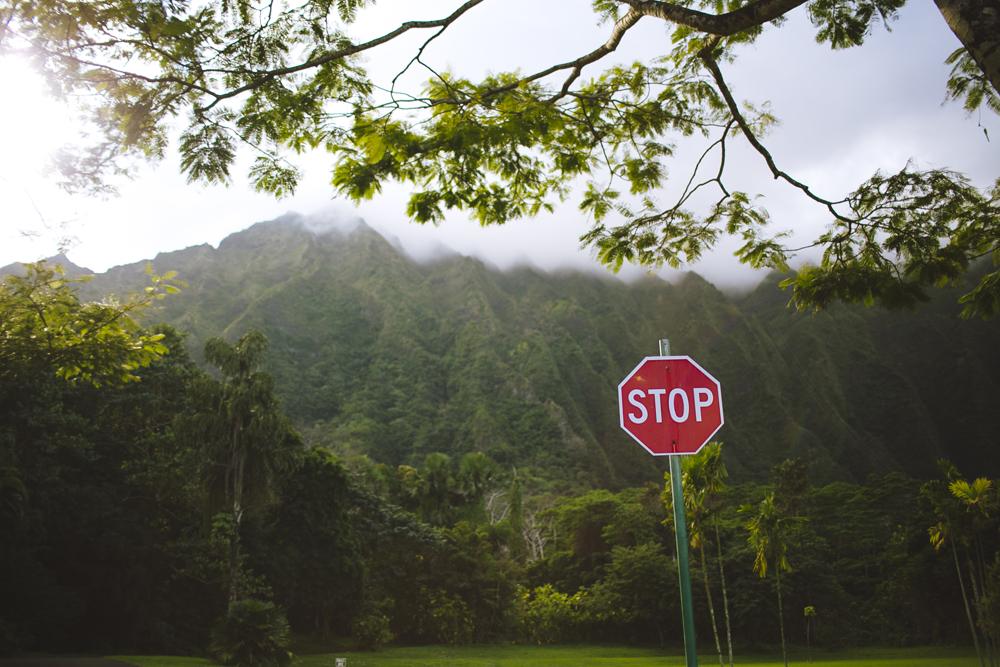 hawaii-wedding-videography_26.jpg