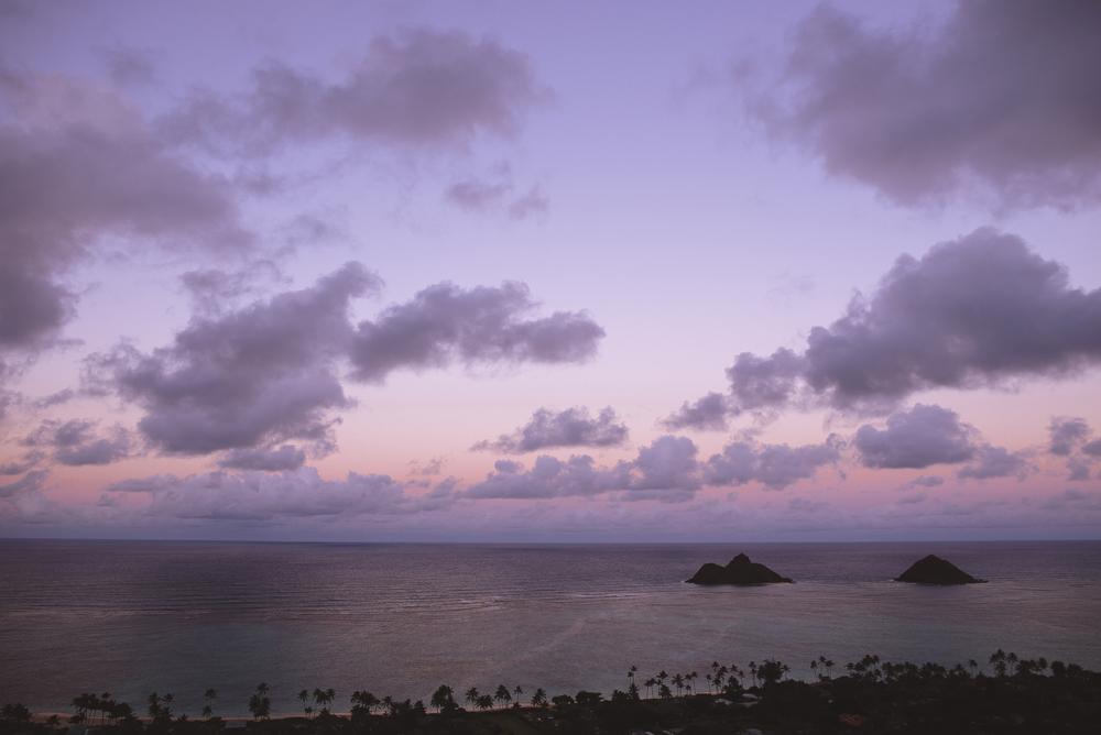 hawaii-wedding-videography_37.jpg