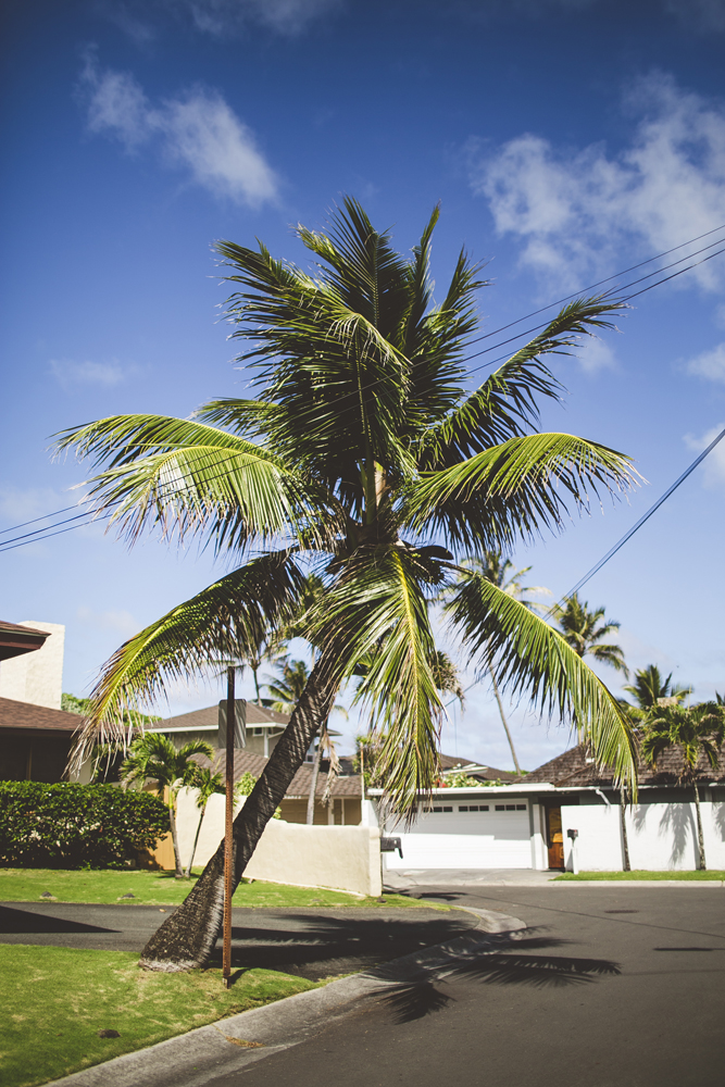 hawaii-wedding-videographer_03.jpg