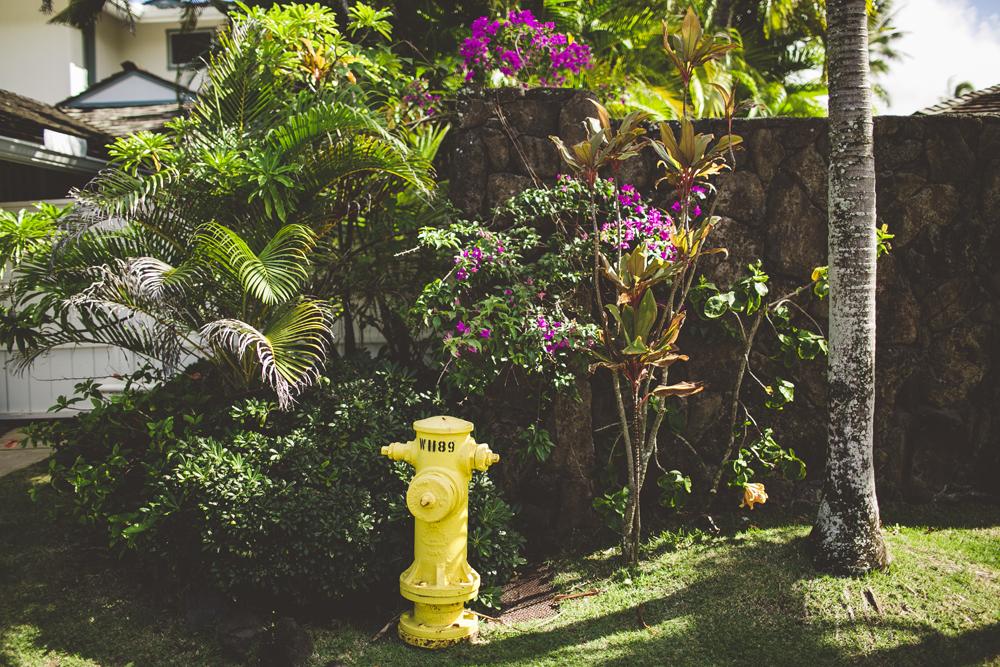 hawaii-wedding-videographer_04.jpg