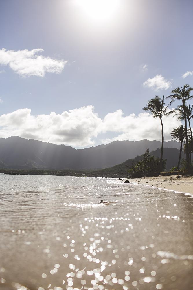hawaii-wedding-videographer_11.jpg