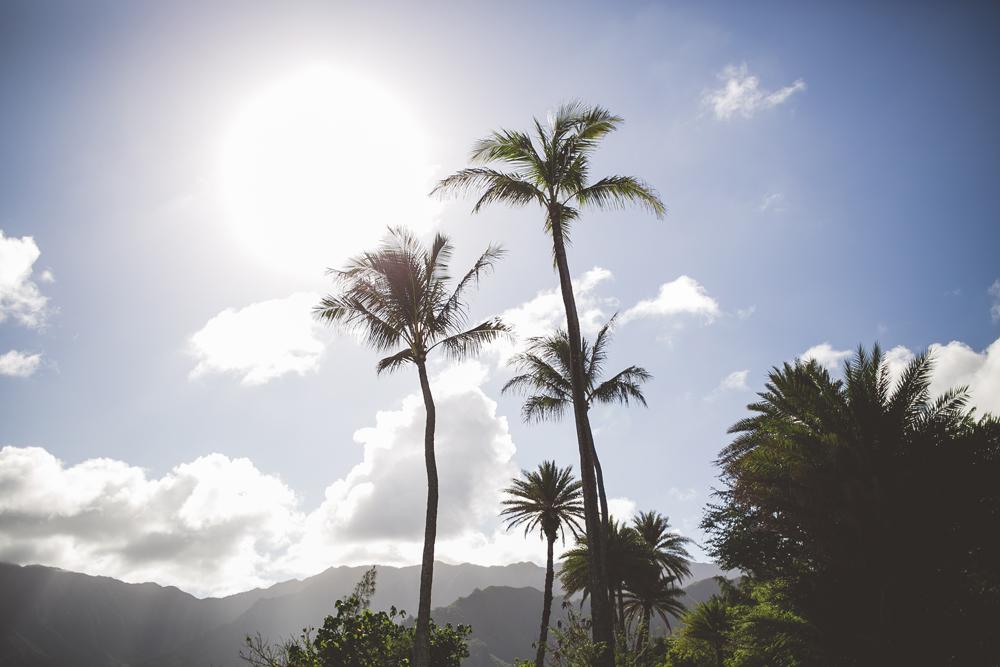 hawaii-wedding-videographer_13.jpg