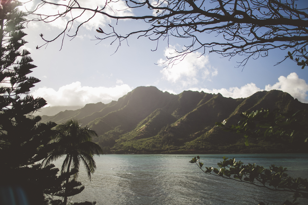 hawaii-wedding-videographer_12.jpg