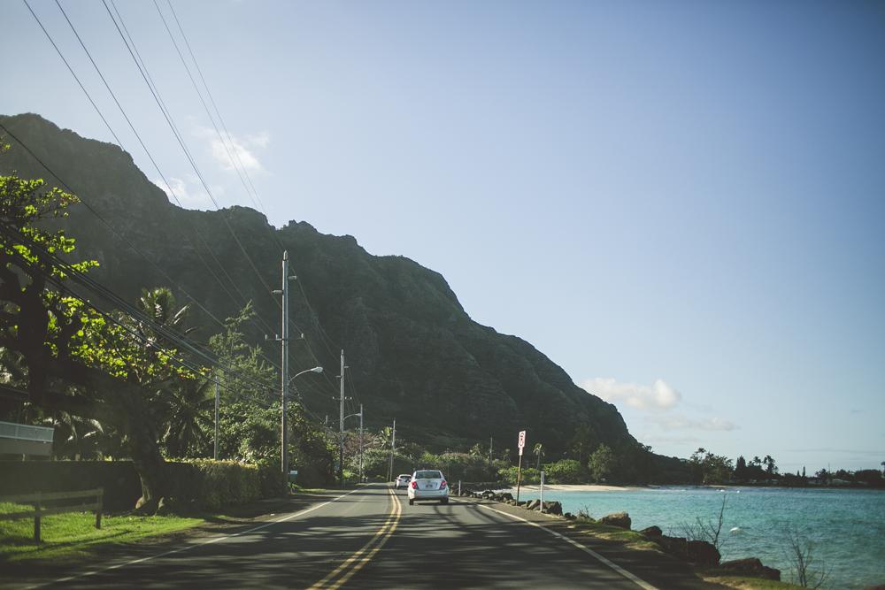 hawaii-wedding-videographer_14.jpg
