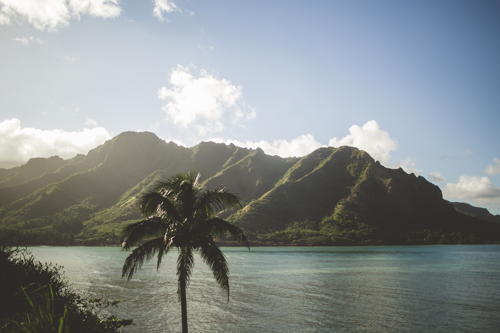 hawaii-wedding-videographer_15.jpg