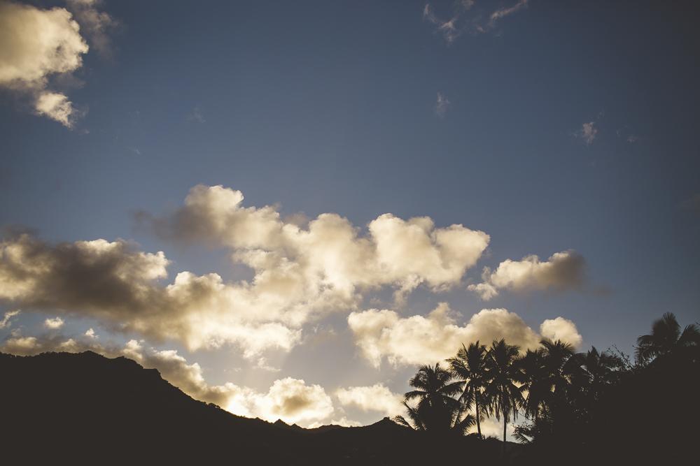 hawaii-wedding-videographer_27.jpg