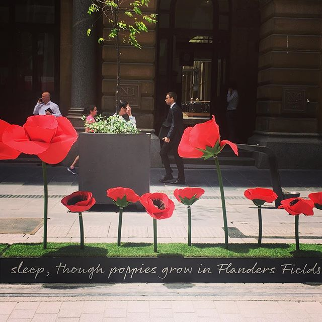 Awesome poppy installation for Remembrance Day