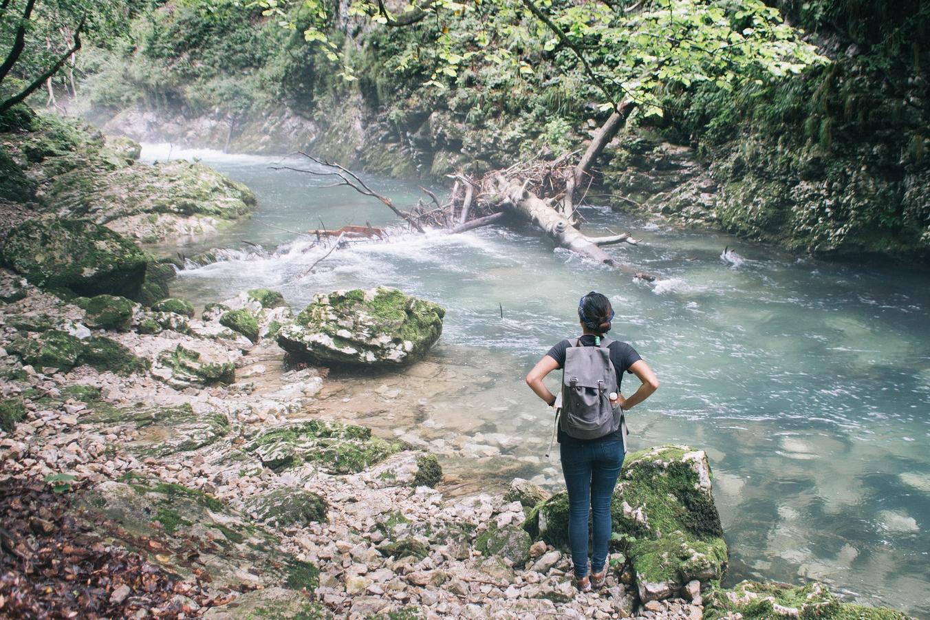 Vintgar Gorges