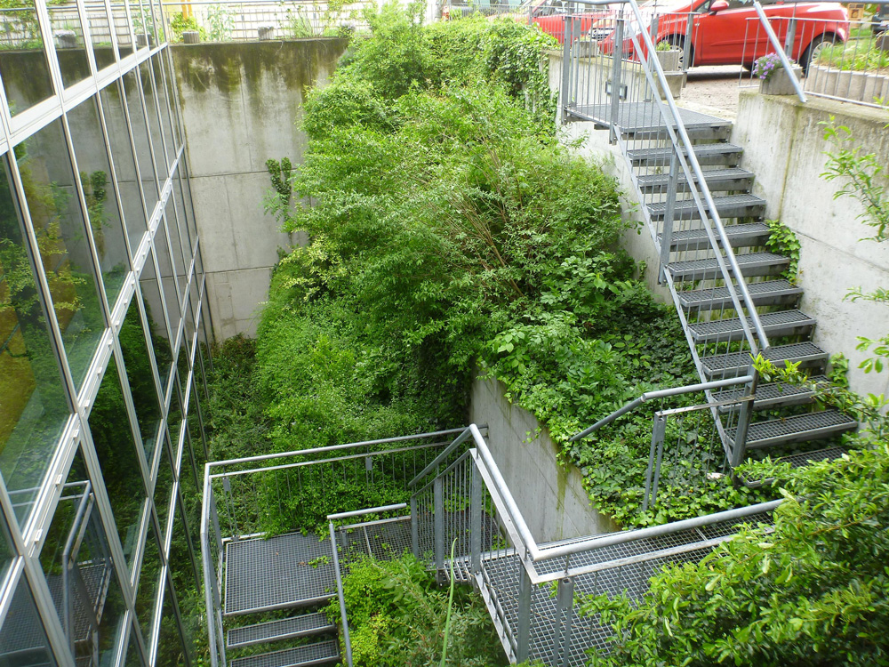 Nord_Ostwand-mit-Zugang-(Individuell)-(2).jpg