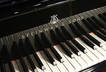 steinway-model-M-grand-piano-LAB.jpg