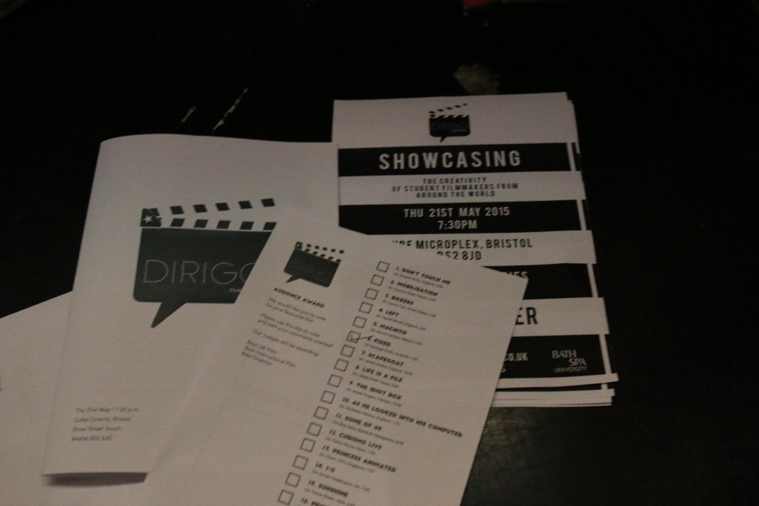 film festival 03.jpg