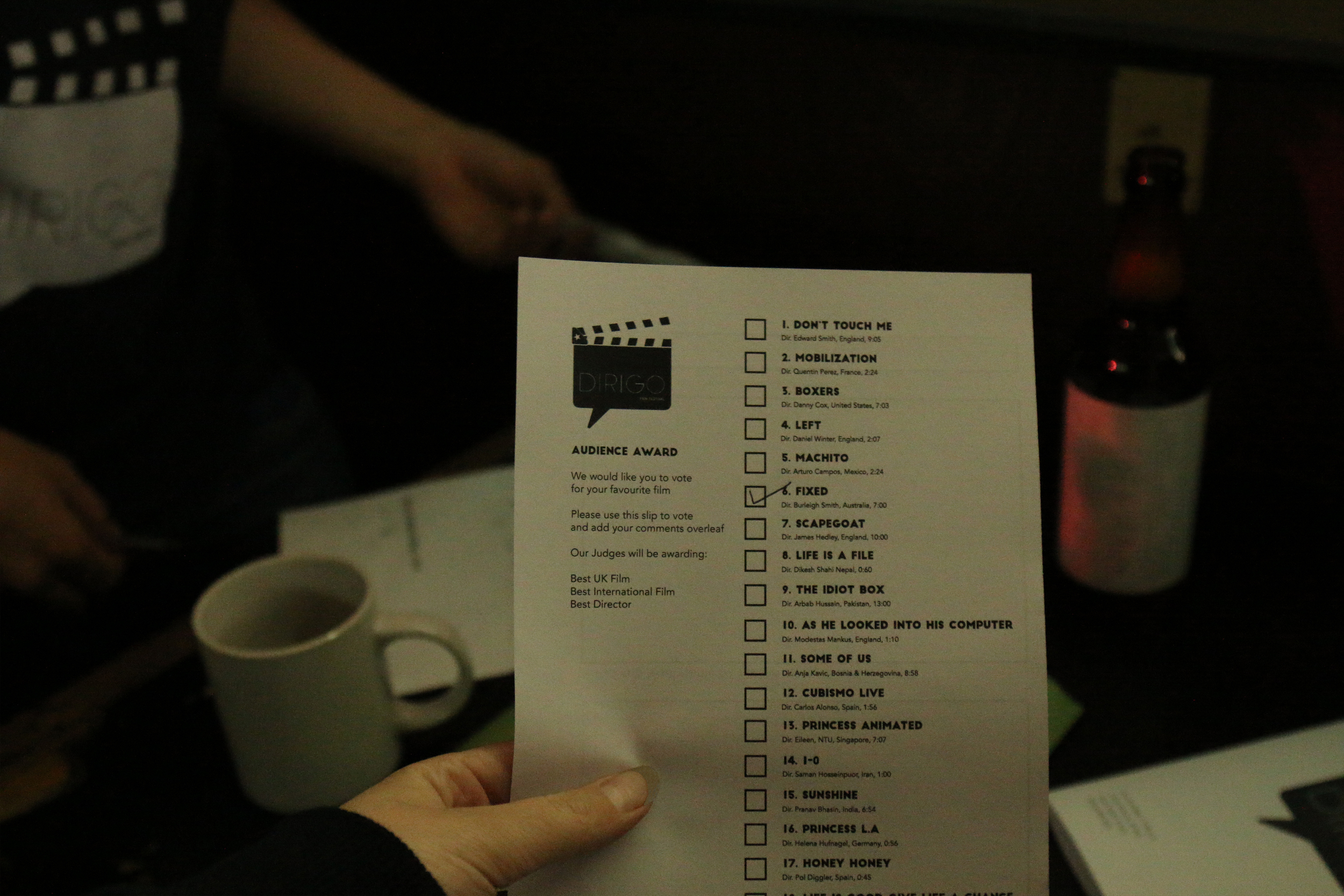 film festival 04.jpg