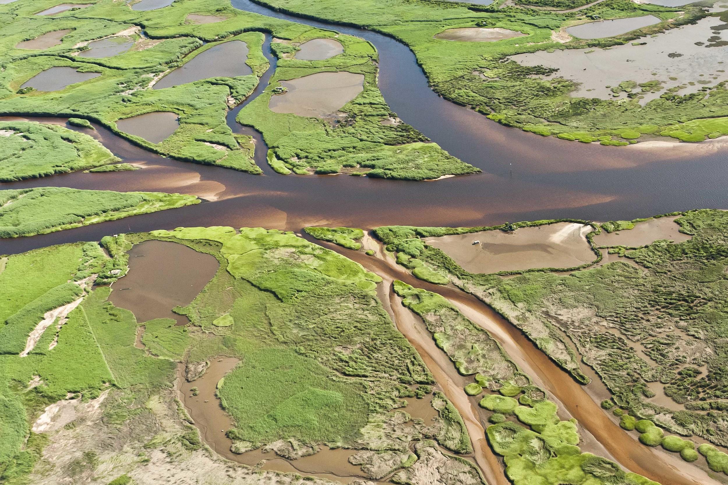 Delta de la Leyre, Bassin d'Arcachon.