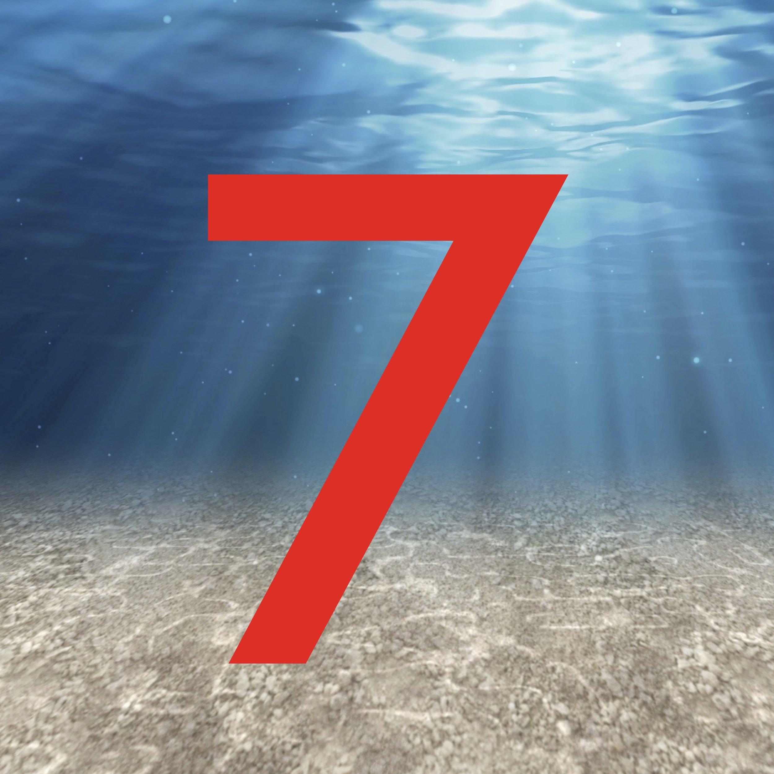 7 Logo .jpg
