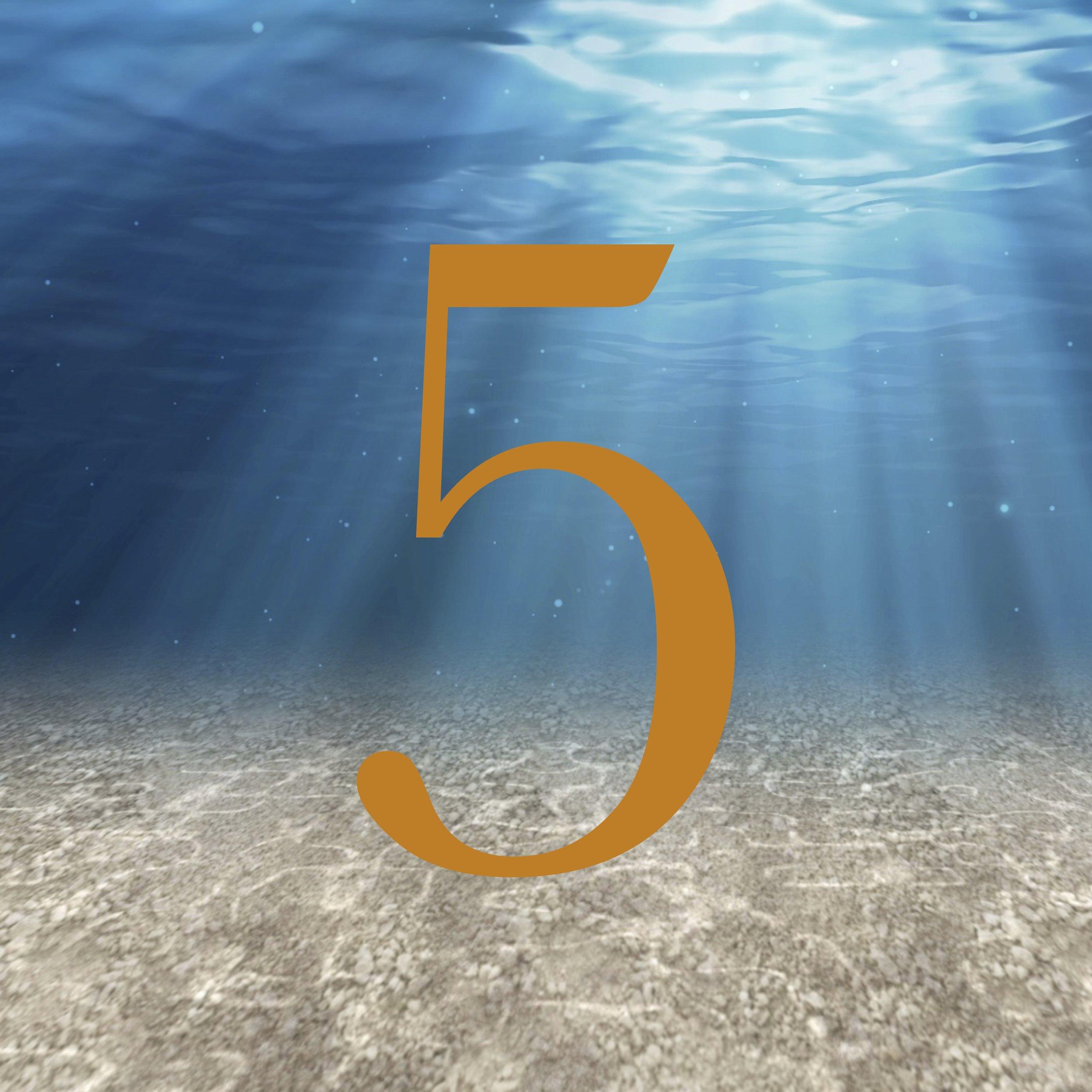 5 Logo.jpg