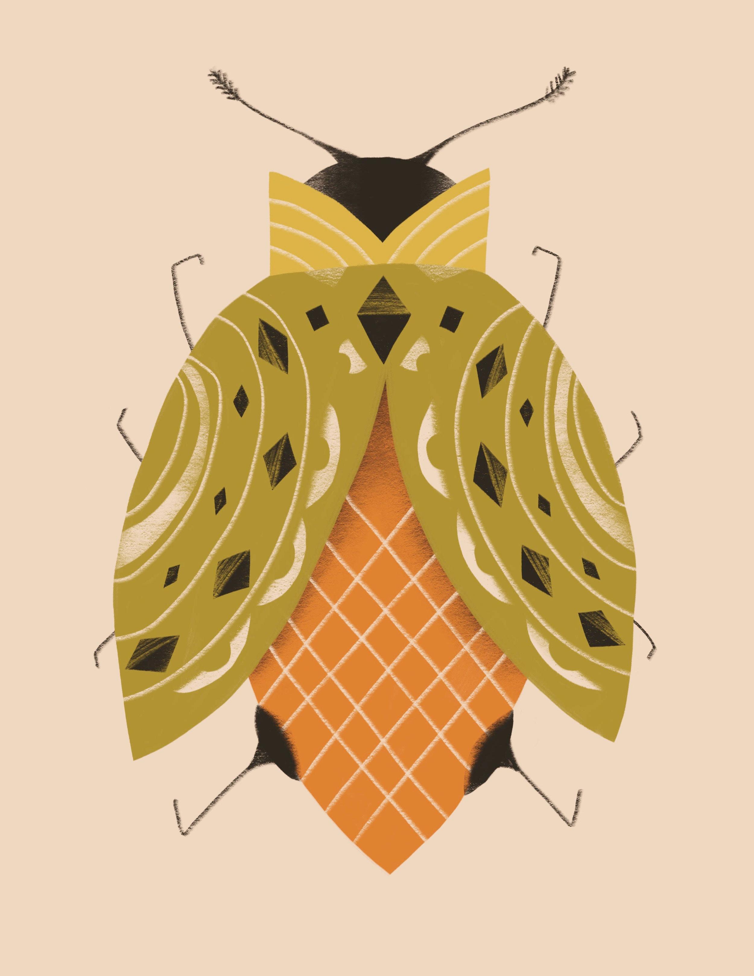 beige-bug-illustration-erin-wallace.jpg