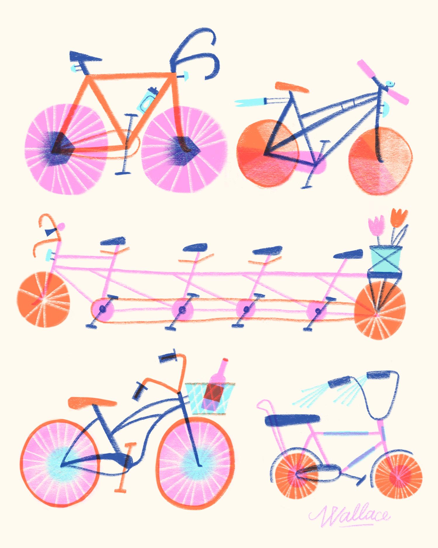 bikes-illustration-erin-wallace.jpg