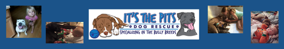 pits-logo.png