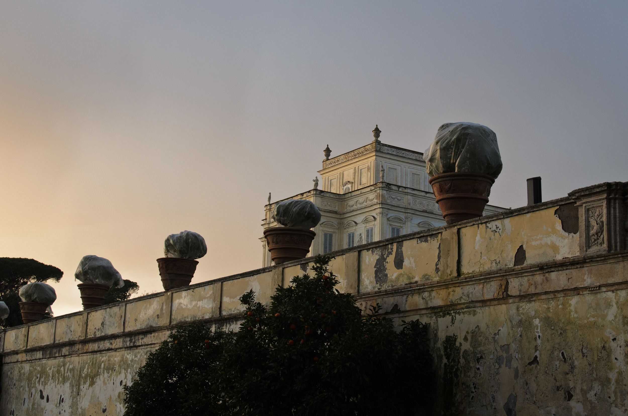 Villa Doria Pamphili at sunset