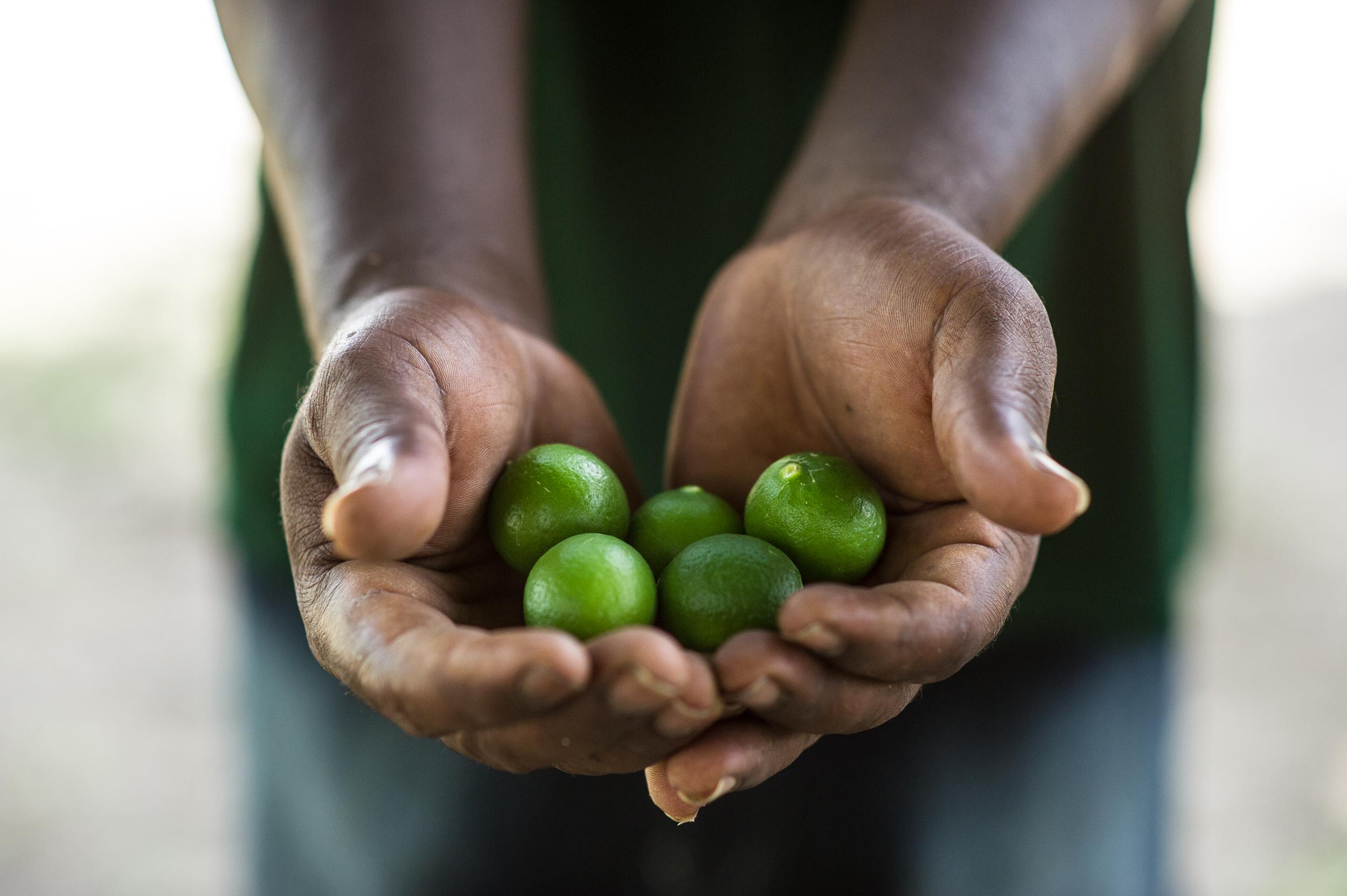 FINCA_Haiti-17.jpg
