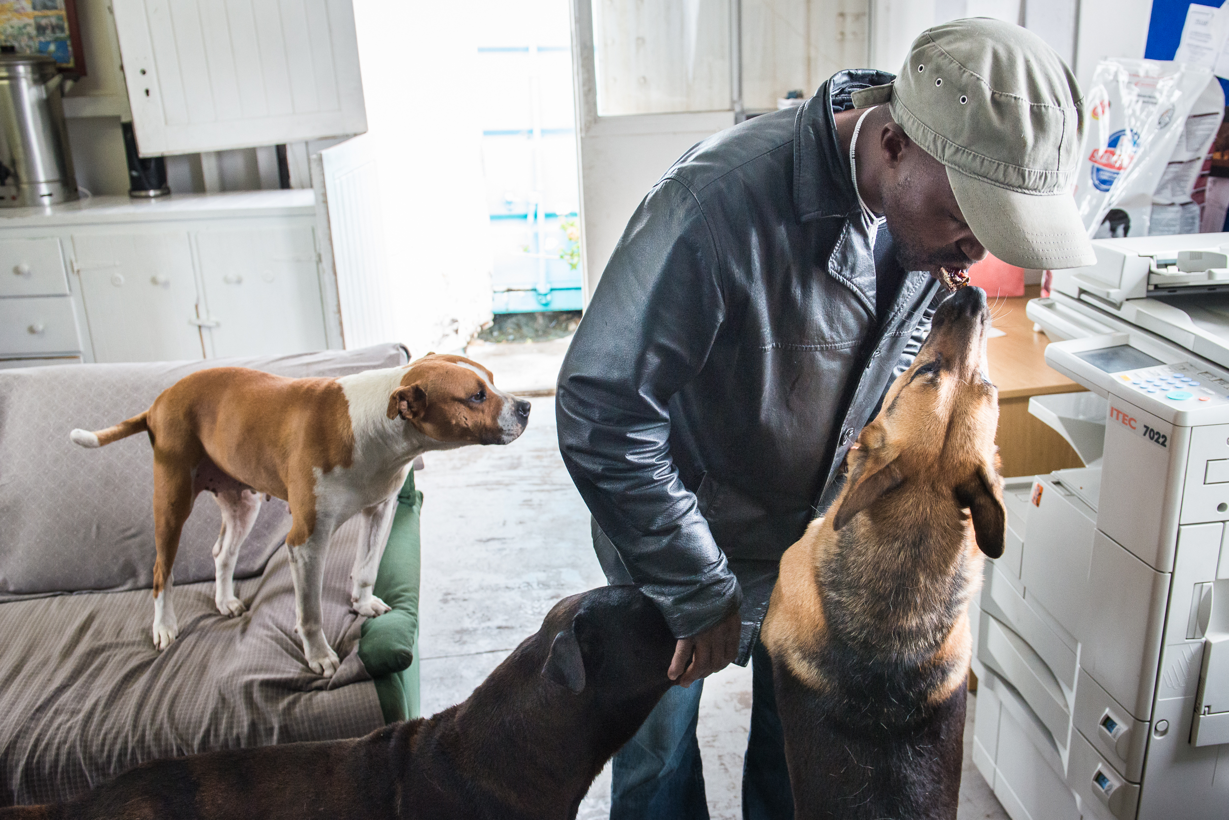 Tshayisa shares his afternoon snack with the clinic's resident dogs.